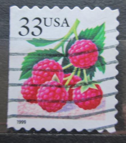 Poštovní známka USA 2000 Maliny Mi# 3112 IBH