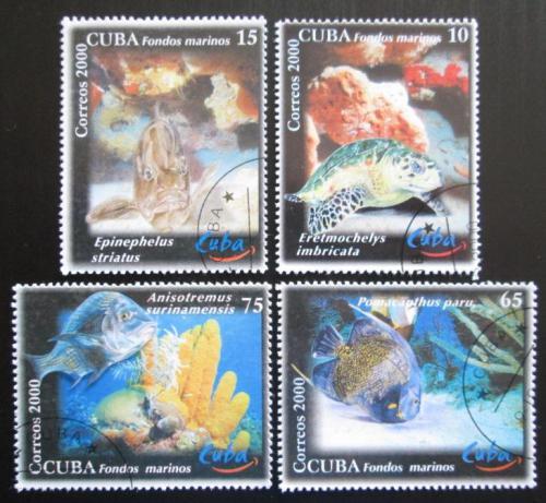Poštovní známky Kuba 2000 Moøská fauna Mi# 4314-17