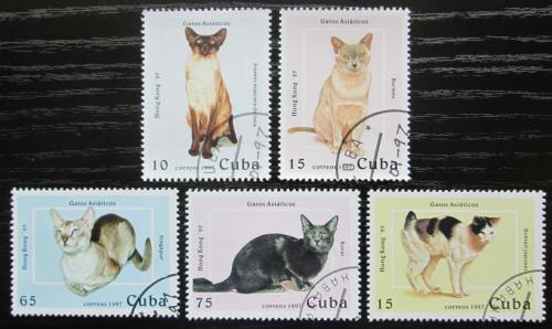 Poštovní známky Kuba 1997 Asijské koèky Mi# 3988-92