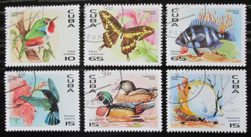 Poštovní známky Kuba 1996 Fauna Karibiku Mi# 3926-31