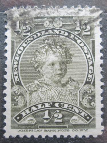 Poštovní známka Newfoundland 1897 Král Edward VII. Mi# 61