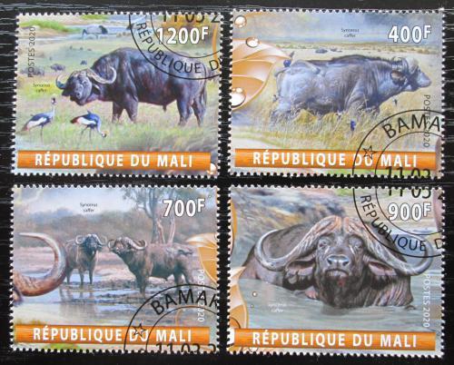 Poštovní známky Mali 2020 Buvoli Mi# N/N