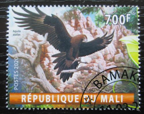 Poštovní známka Mali 2020 Orel klínoocasý Mi# N/N