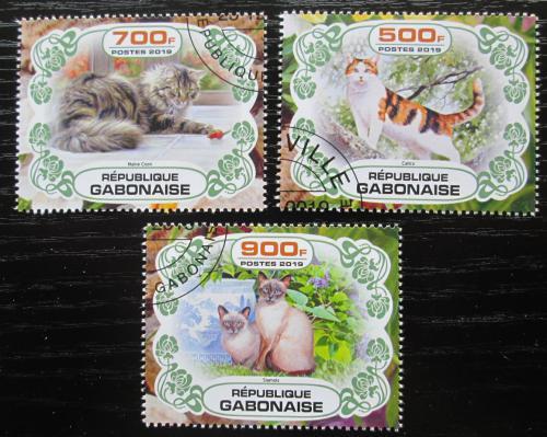 Poštovní známky Gabon 2019 Koèky Mi# N/N