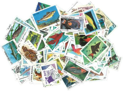 Sestava Ryby a moøská fauna - 250 rùzných razítkovaných známek
