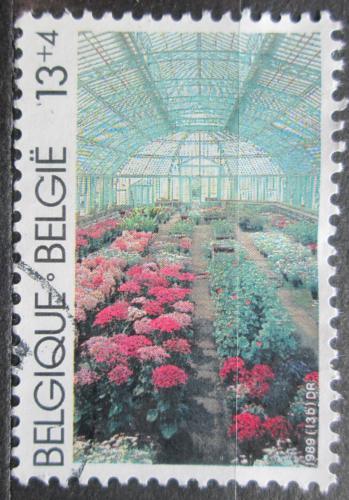Poštovní známka Belgie 1989 Královský skleník v Laekenu Mi# 2393