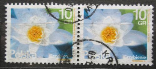 Poštovní známky Polsko 2015 Leknín pár Mi# 4788