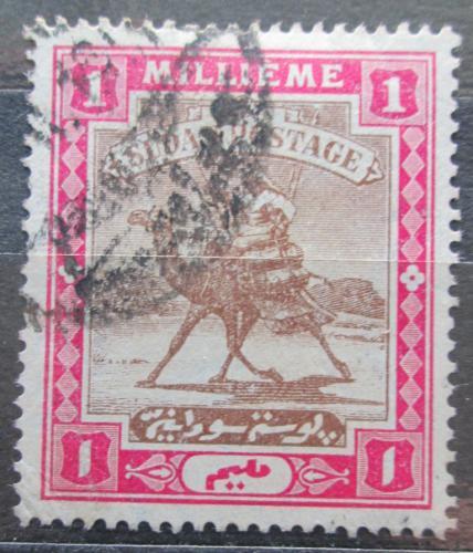 Poštovní známka Súdán 1905 Jezdec na velbloudovi Mi# 17