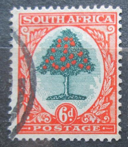Poštovní známka JAR 1926 Pomeranèovník èínský Mi# 27