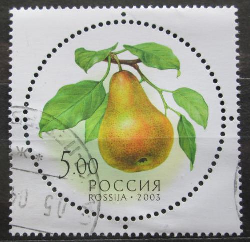 Poštovní známka Rusko 2003 Hruška Mi# 1114