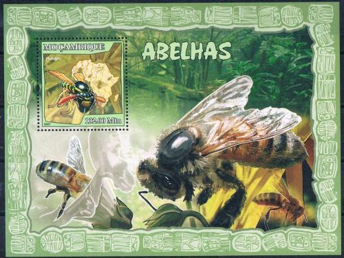 Poštovní známka Mosambik 2007 Vèely Mi# Block 215 Kat 10€